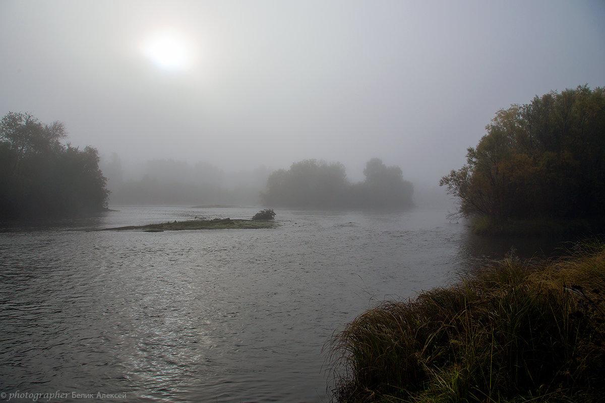 туман - Алексей Белик