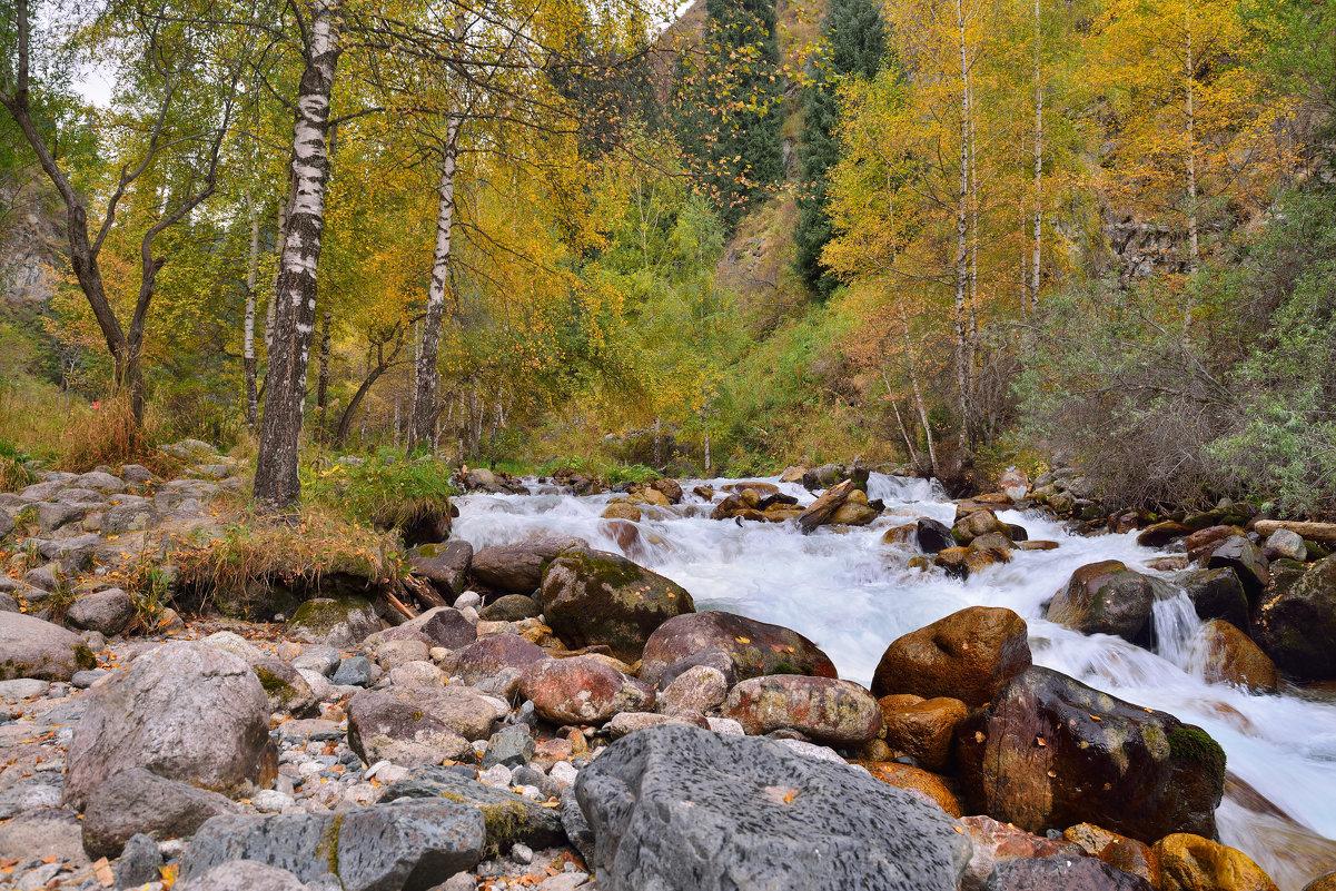 Осень. Горы 3 - Андрей Гомонов