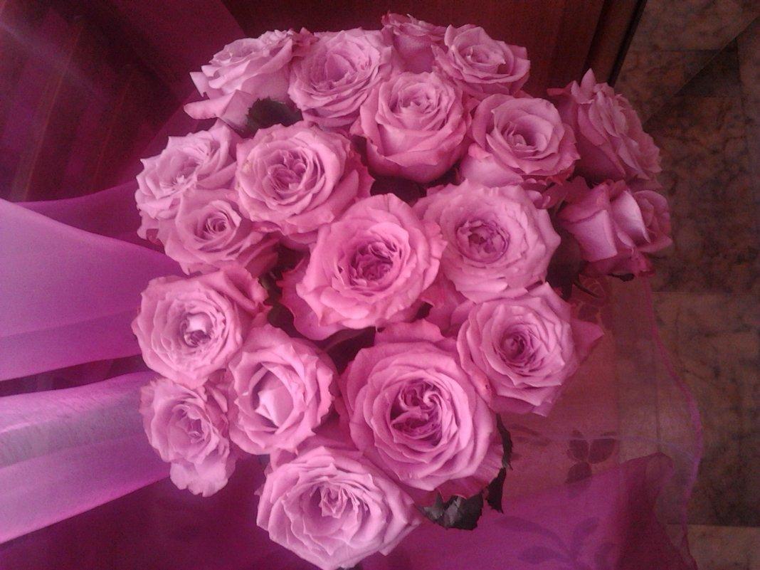Розовые розы - марина ковшова