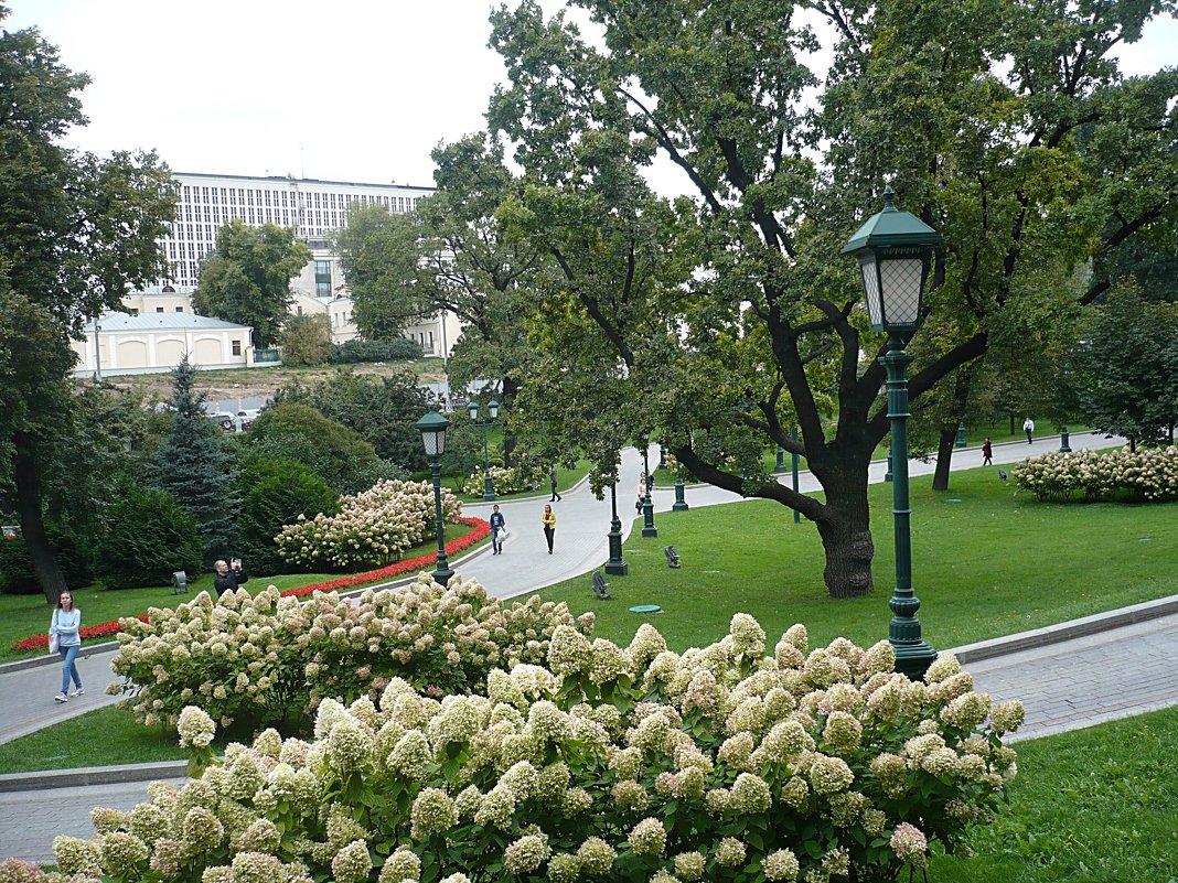 Александровский сад - натальябонд бондаренко