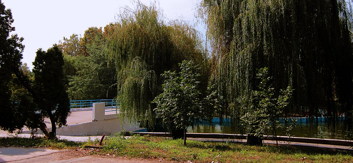 Ивушки над мостиком - Людмила