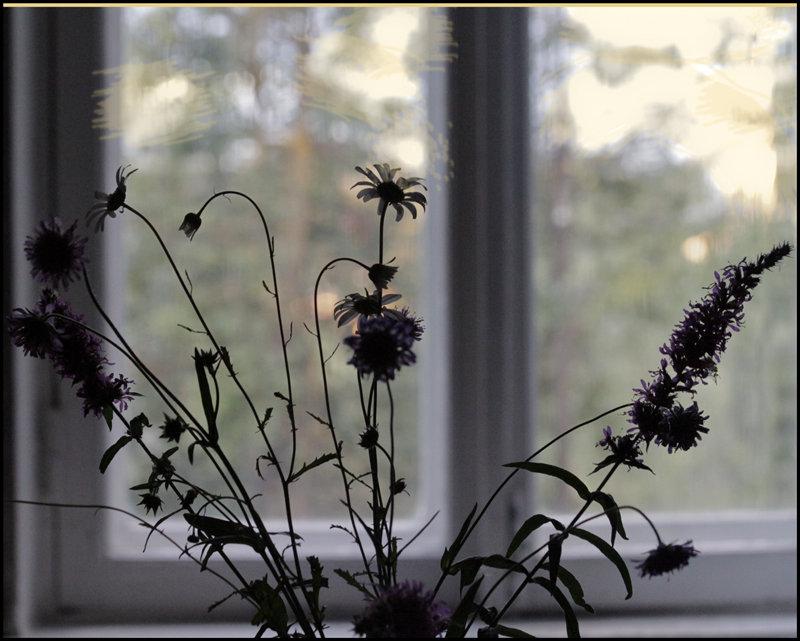 Осенний букет - galina bronnikova