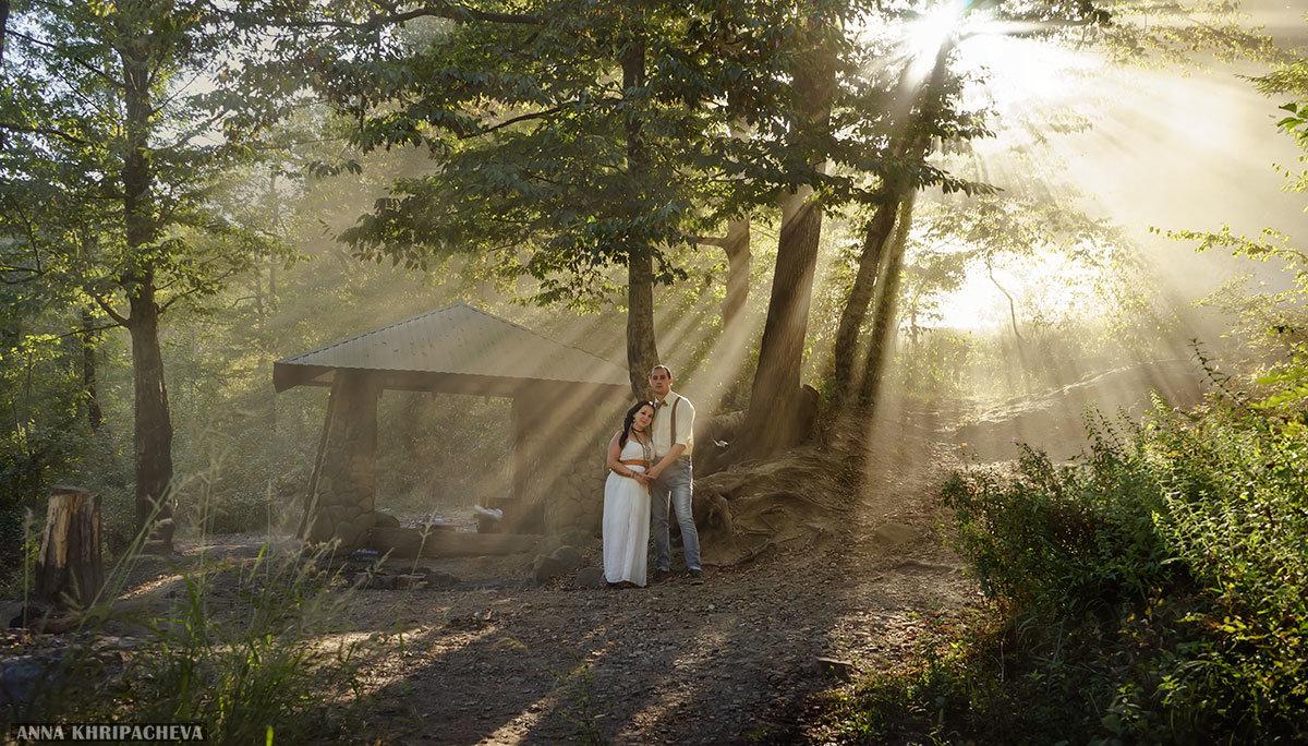 В лучах солнца - Анна Хрипачева