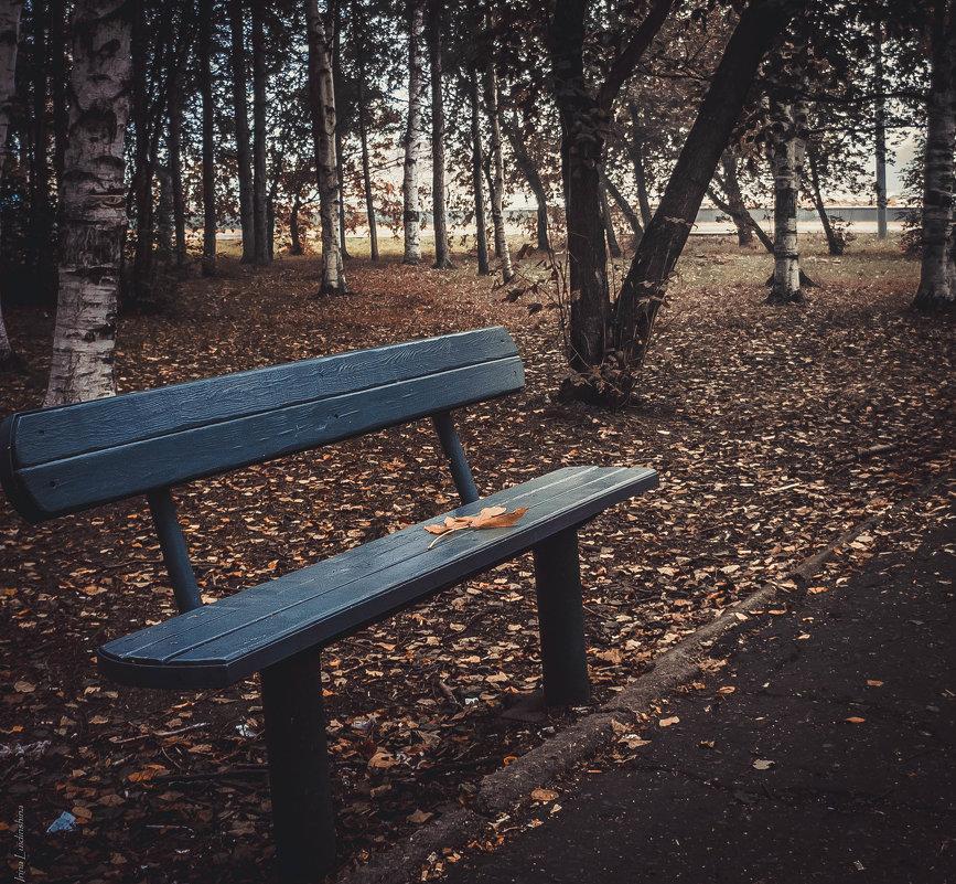 Лавочка в парке.. - Ирина Антоновна