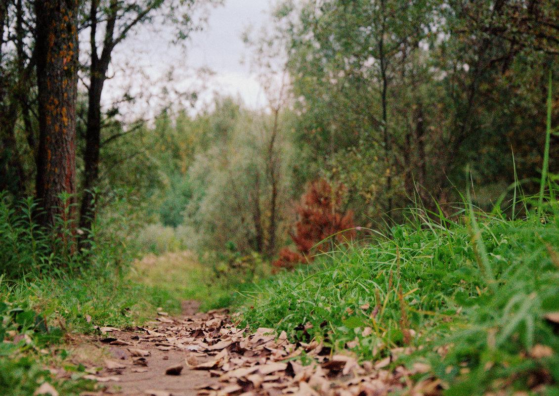 Дыхание Осени - Saniya Utesheva
