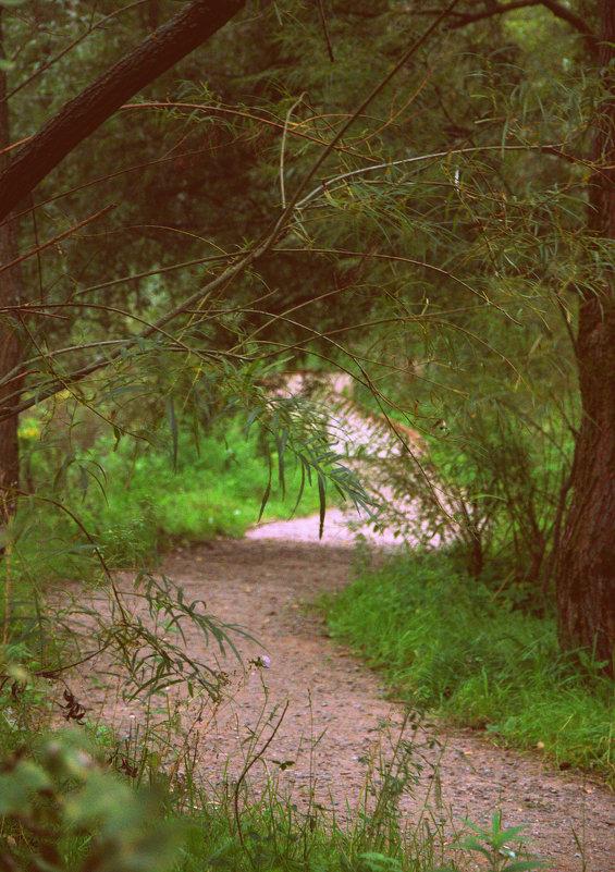 Путь - Saniya Utesheva
