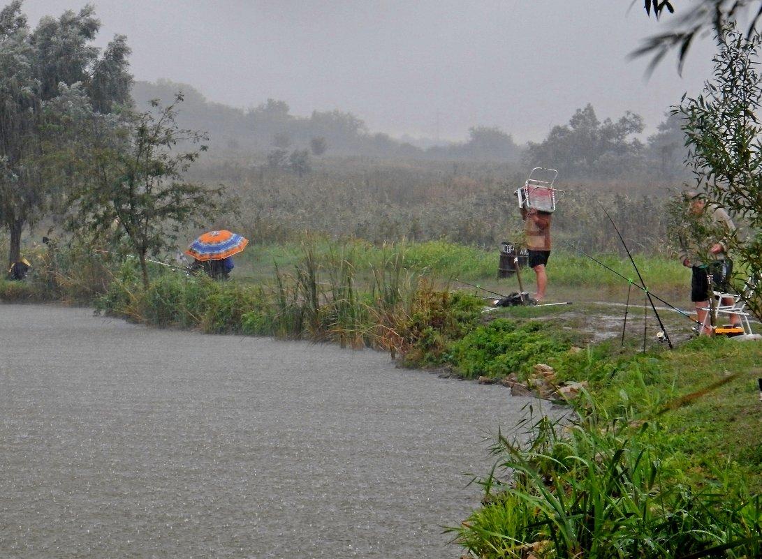 На рыбалке в дождь - Владимир