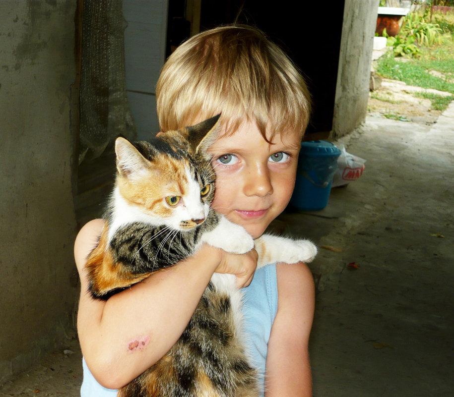 Котики! - Надежда