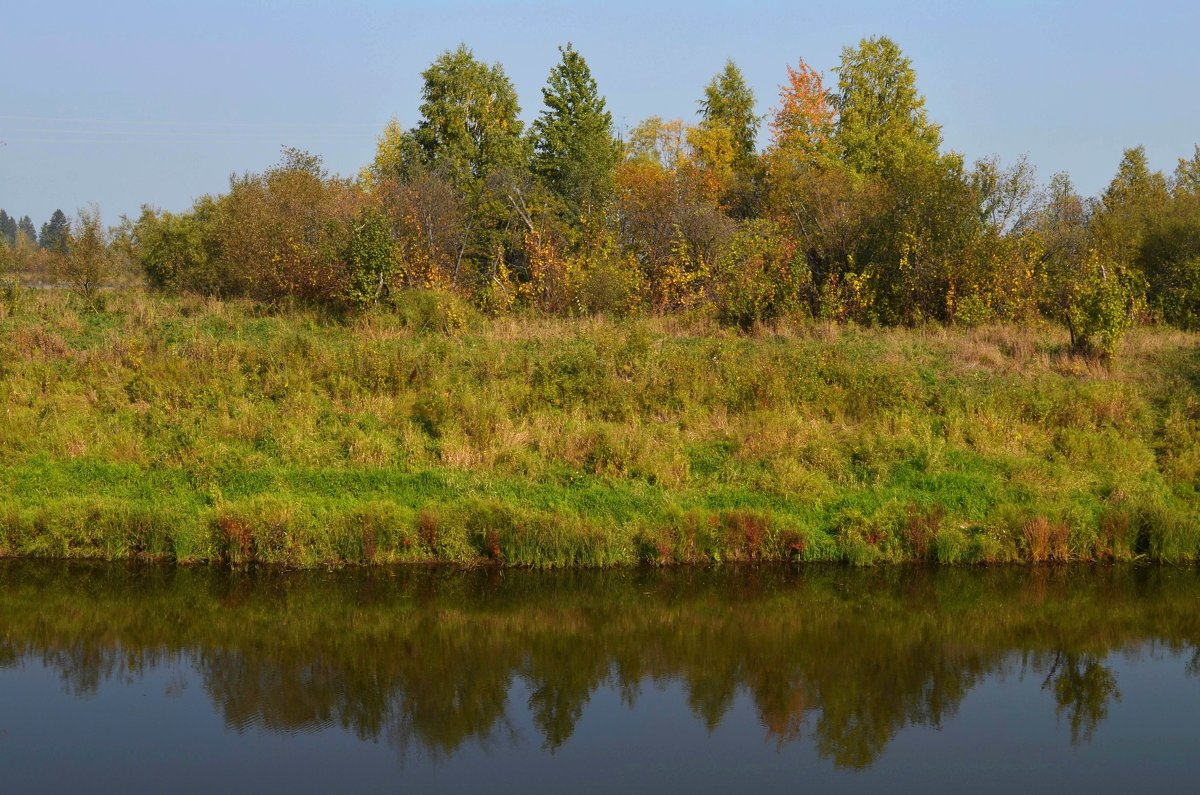 Осень золотая - Вера Андреева