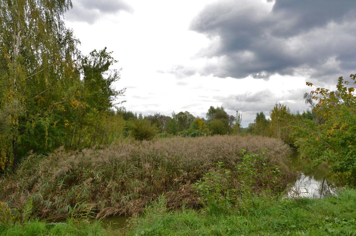Природа в сентябре. - Oleg4618 Шутченко