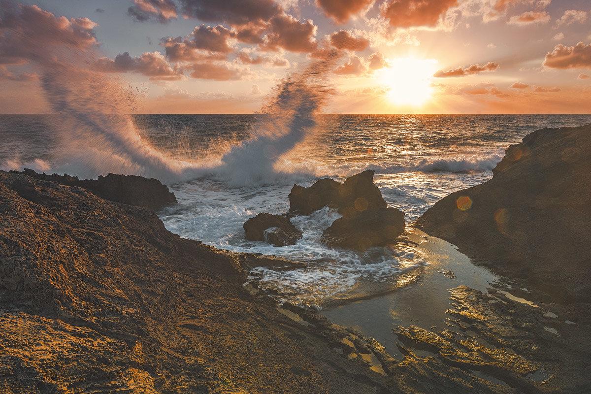 Средиземное - Aaron Gershon