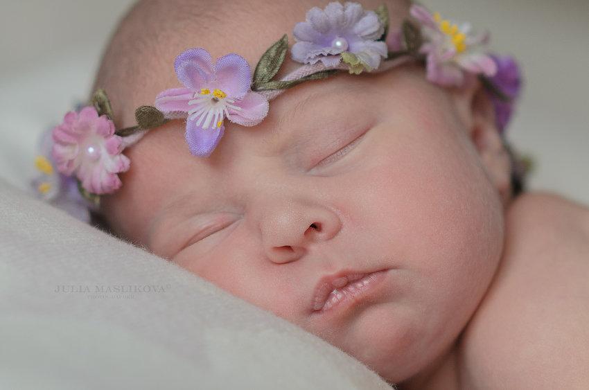 Новорожденные сны. - Юлия Масликова