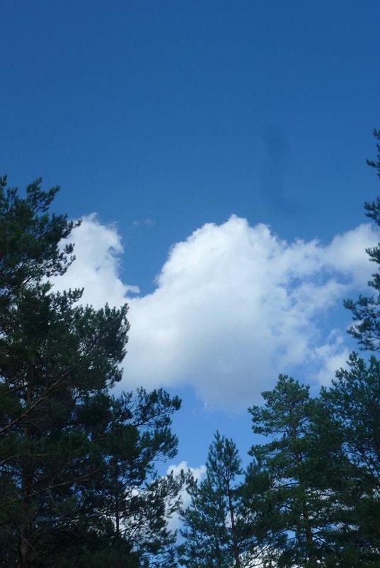 Облако играет в прятки - Калмакова Марина