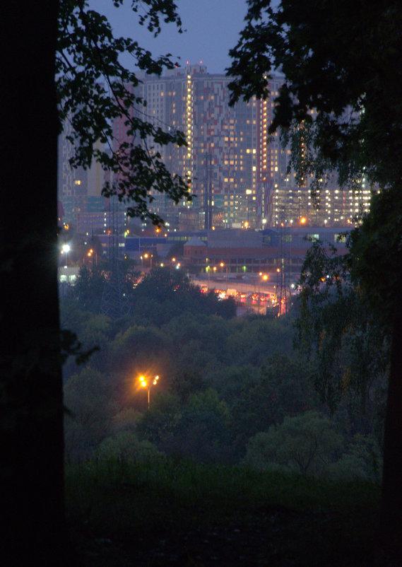 Сумерки в мегаполисе - Saniya Utesheva
