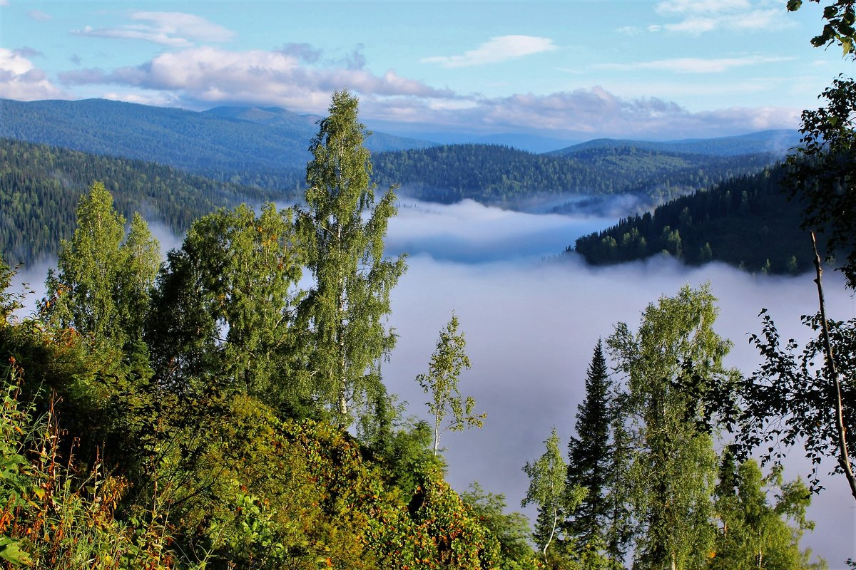 Над рекой туман - Сергей Чиняев