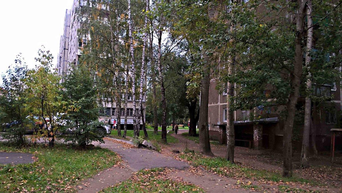 Осень спешит в город - Елена Семигина