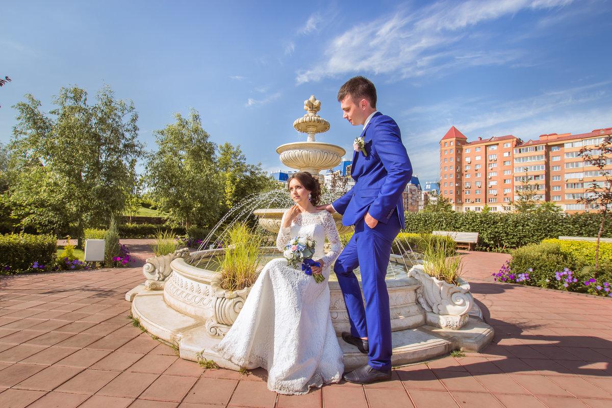 Сады Мечты - Жанна Новикова