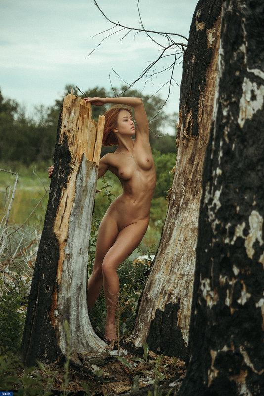 Serenity - Паша Карпенко