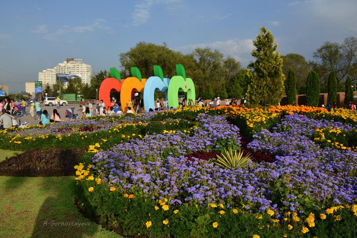 Фестиваль яблок «Aлма Fest-2016» в Алматы. - Anna Gornostayeva
