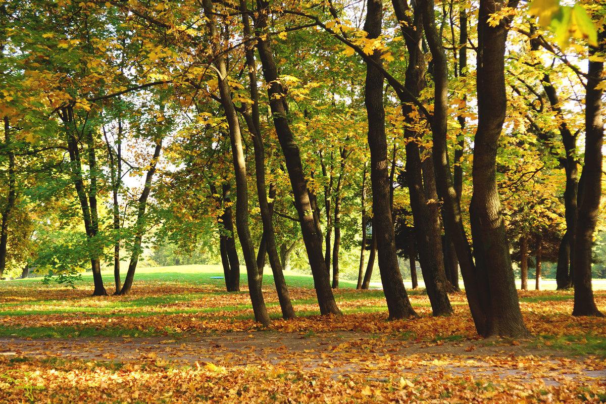 Осенний день - Юлия Мов...