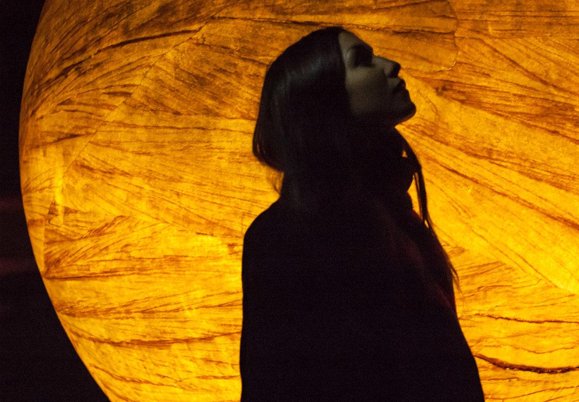 Настя и луна - Елена Яшнева