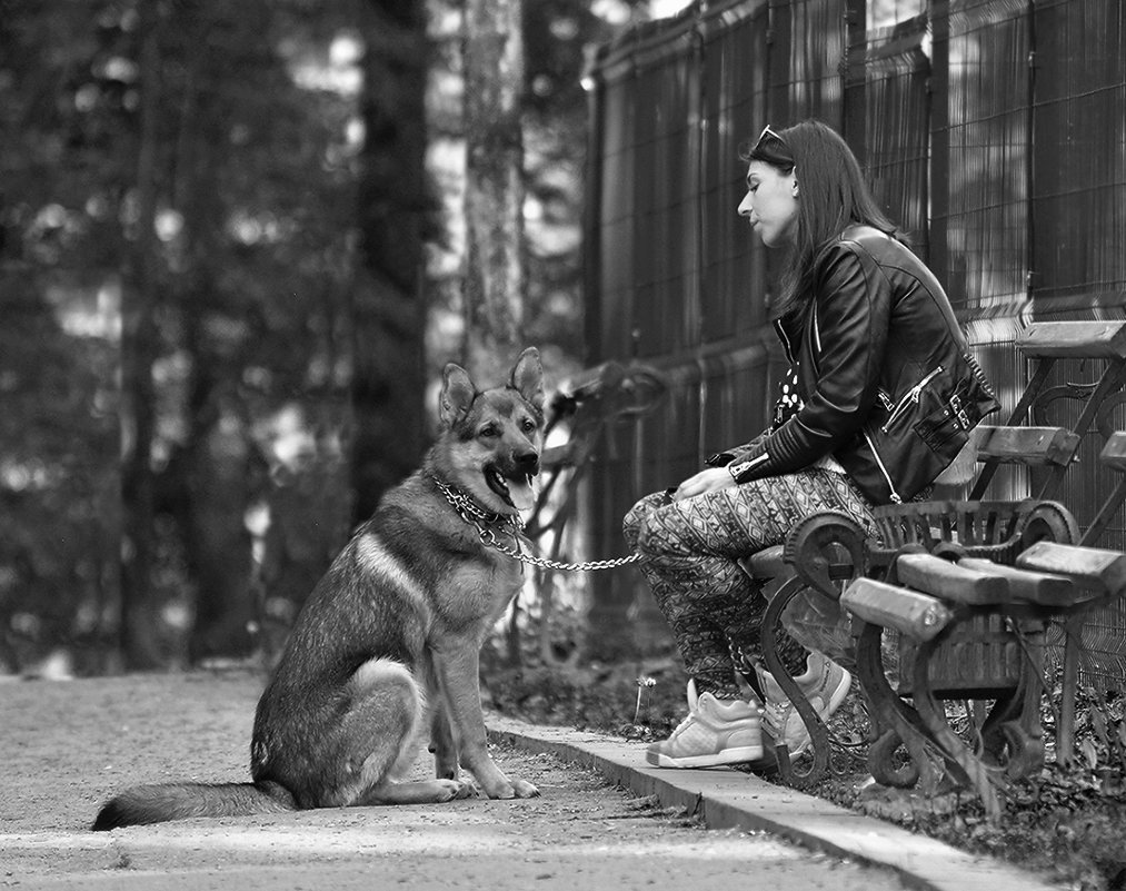 В парке - john dow