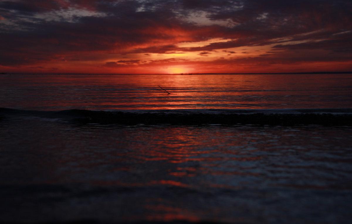 Закат на Финском заливе - Денис Алексеенков