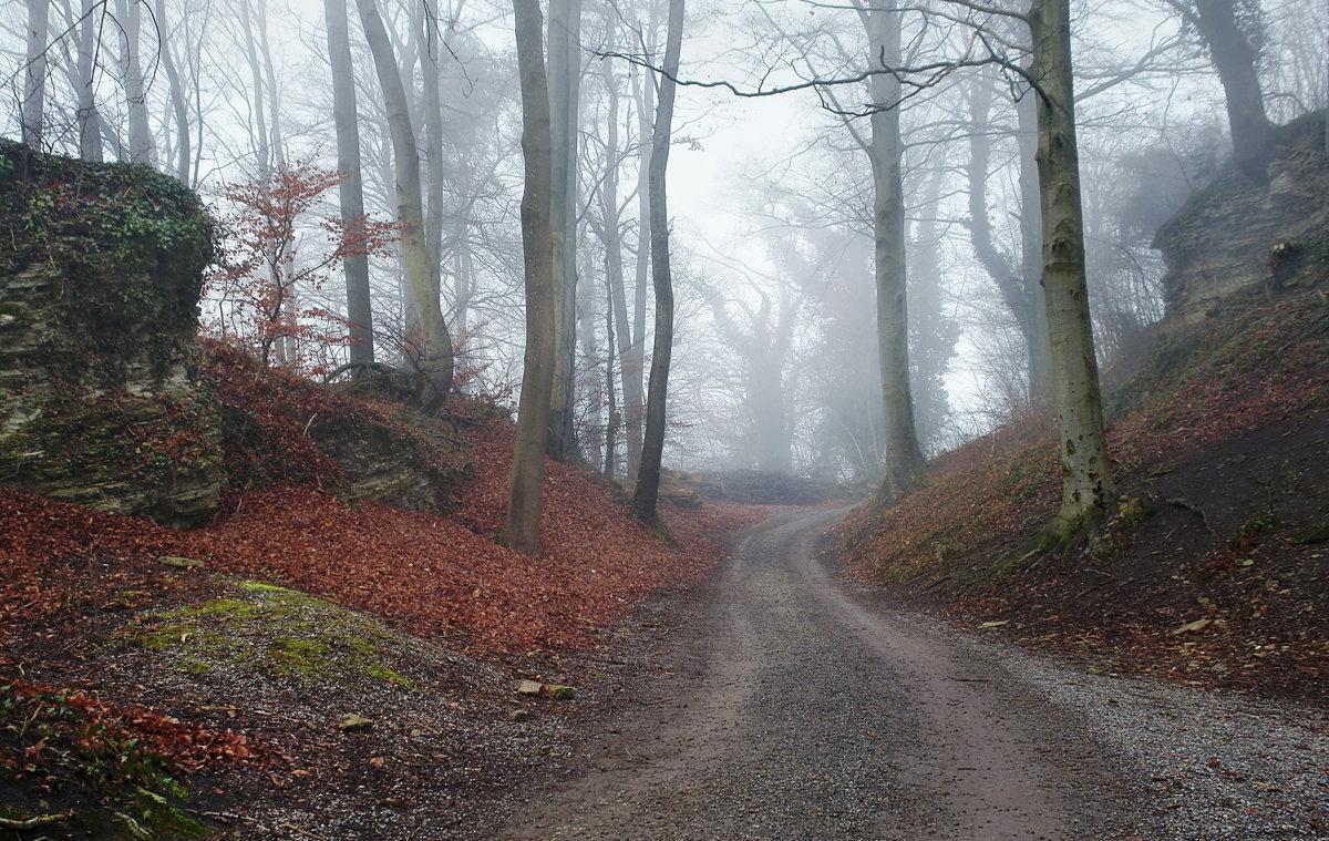 туман - это красиво - Elena Wymann