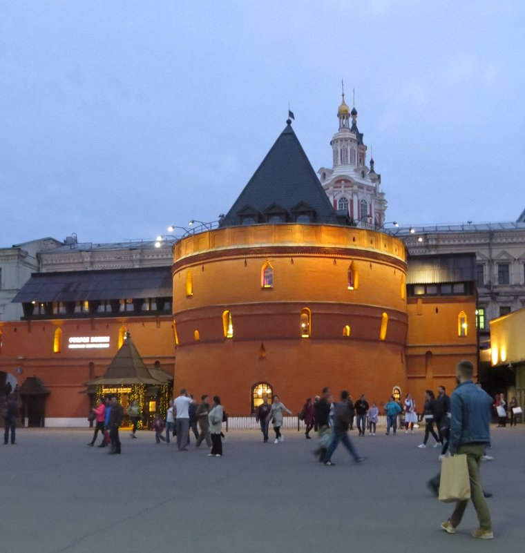 Круглая башня - Вера Щукина