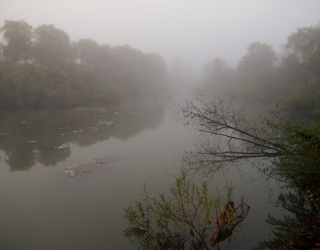 Мост скрылся в пелене тумана - Нина северянка