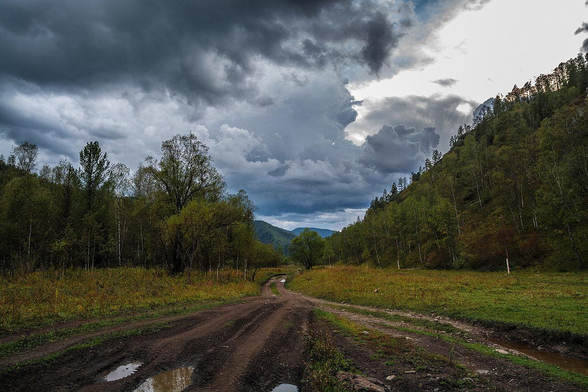 Дорога домой - Андрей Поляков