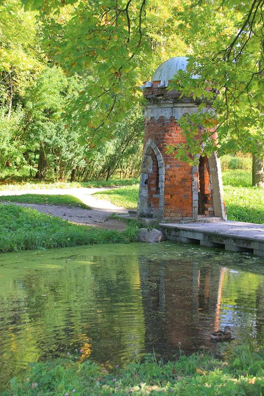 Зеленеющая осень..... - Tatiana Markova