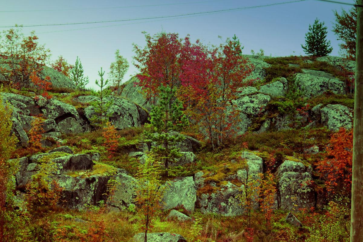 осень на скалах - Сергей Кочнев