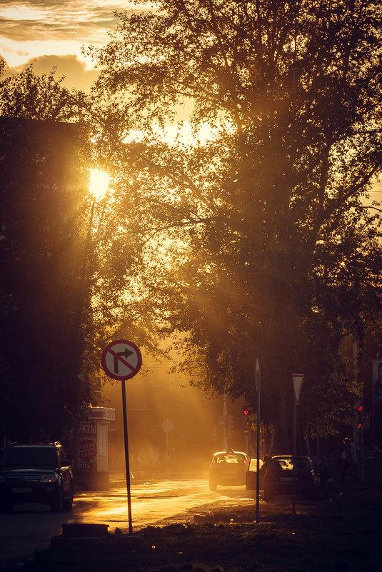 В воздухе словно рассеяли медную пыль... - Дмитрий Костоусов