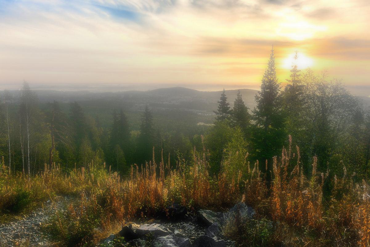 Утренний туман - vladimir Bormotov
