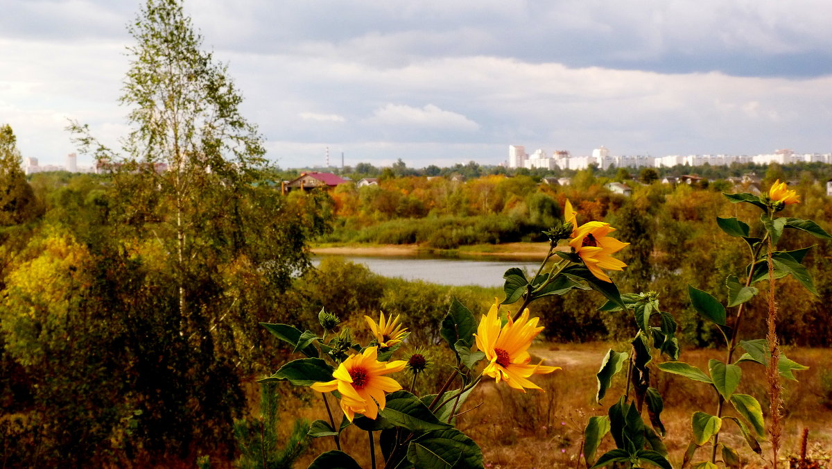 сентябрьский день - Александр Прокудин