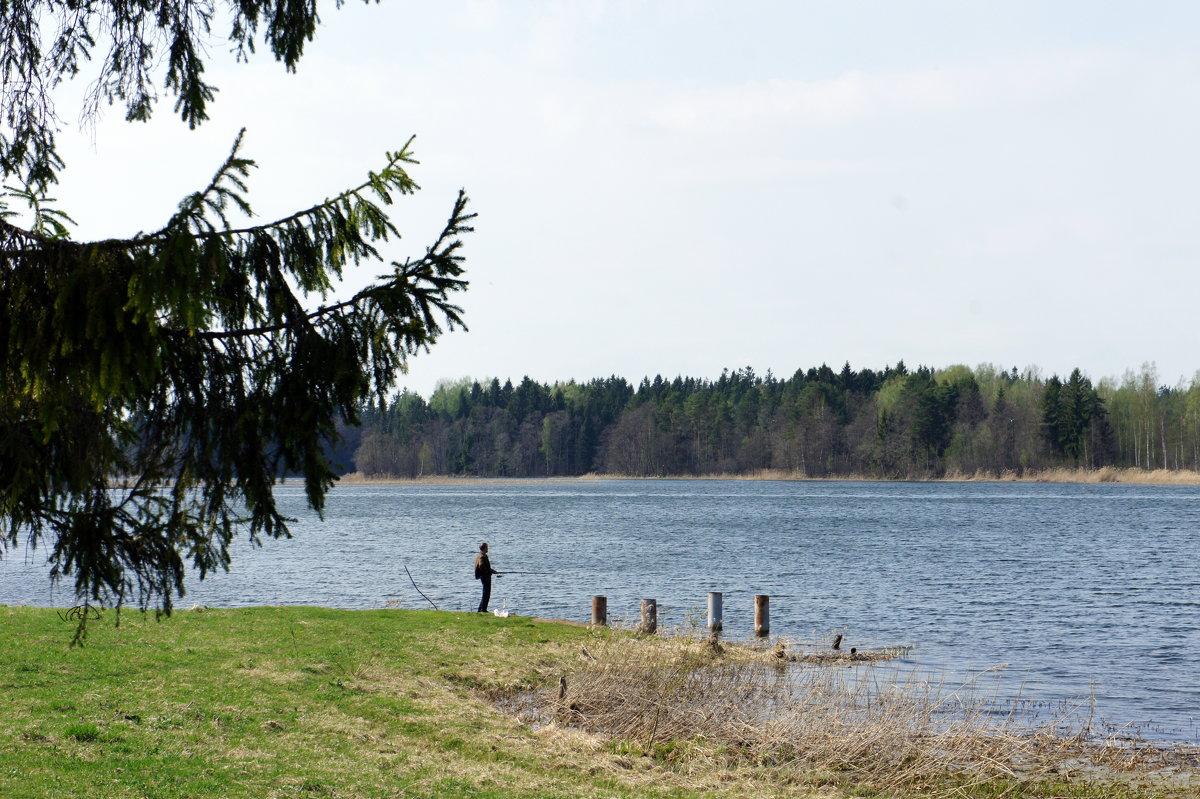 Валдайское озеро - Елена Павлова (Смолова)