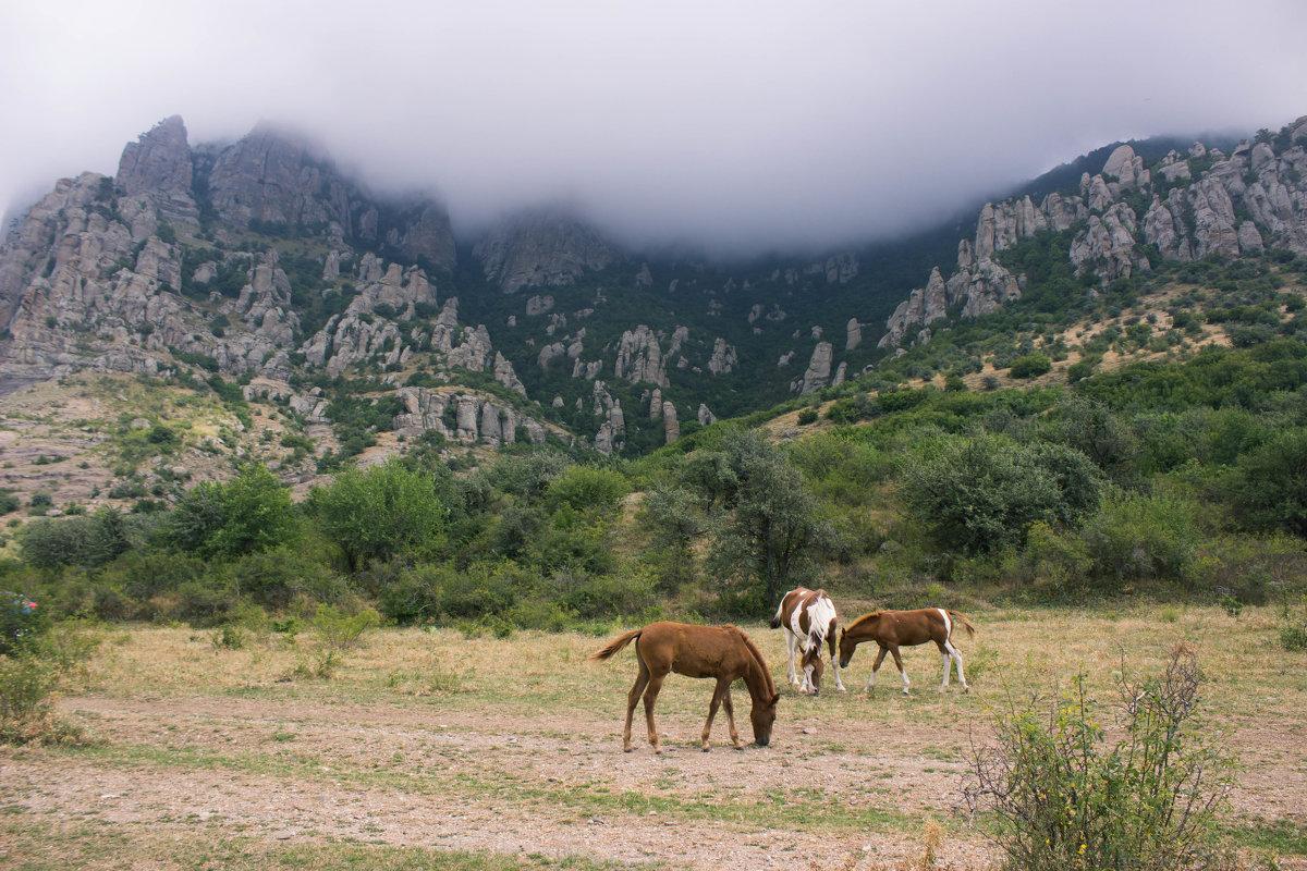У подножия Долины Приведений - Диана Ардашева