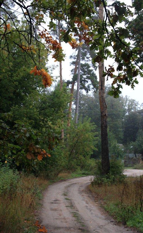Дорога в  осень.... - Валерия  Полещикова