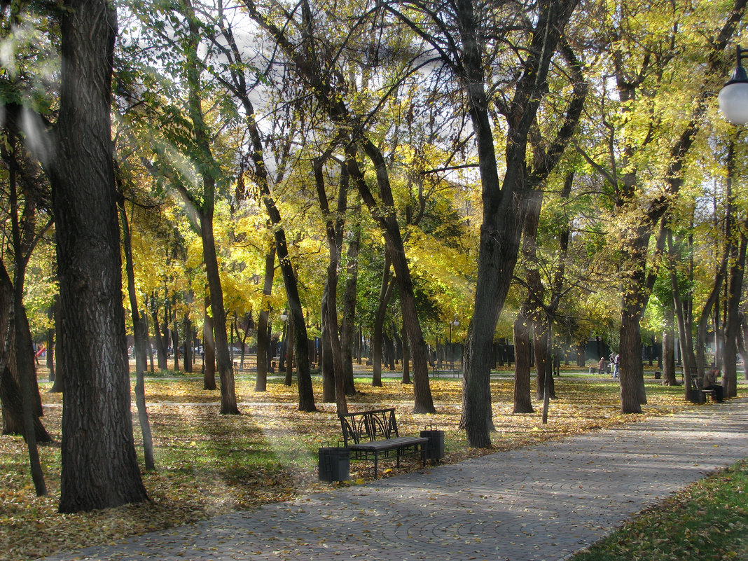 Осенний парк... - Михаил Болдырев
