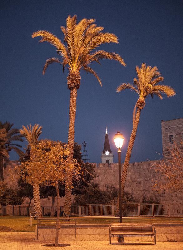 У стены Старого города Иерусалима. - Alla