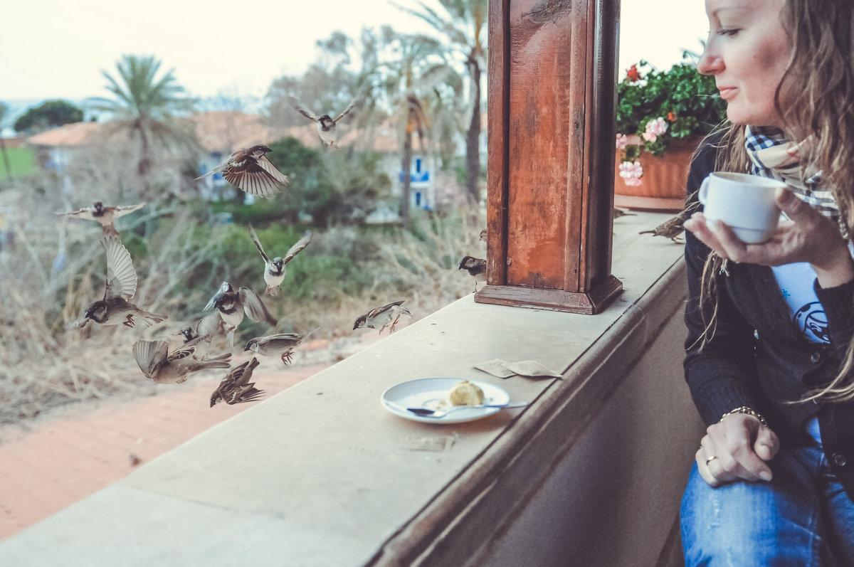 Наедине с птицами - Александр Колесников