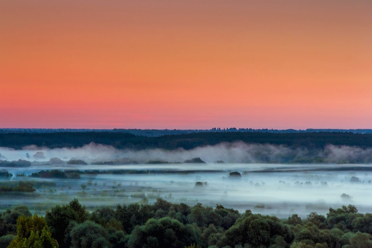Линии тумана - Юрий Стародубцев