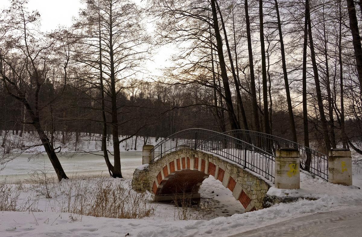 В старом парке - Владимир Брагилевский