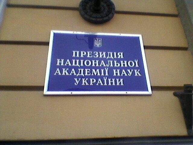 Київ - Миша Любчик