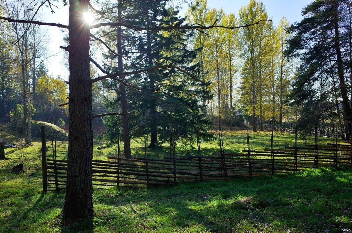 Национальный парк Tyresta - Swetlana V