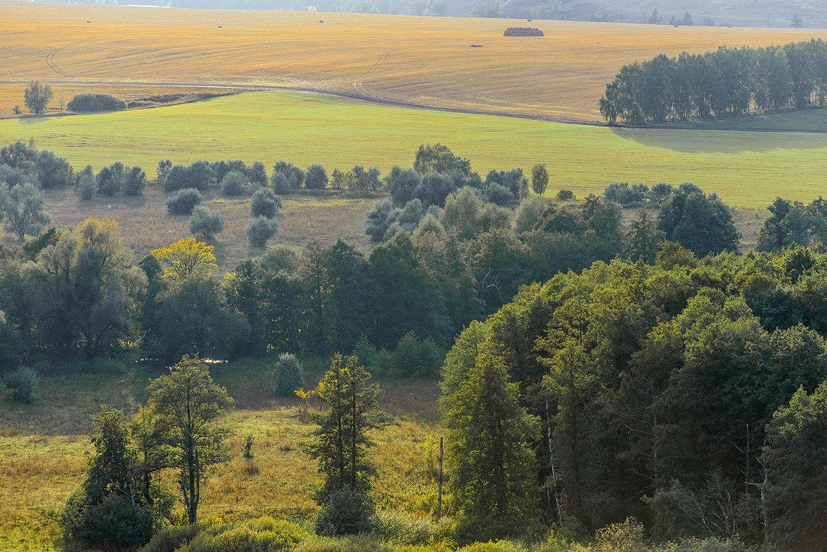 Твои реки, озера, леса и поля... - Влад Никишин