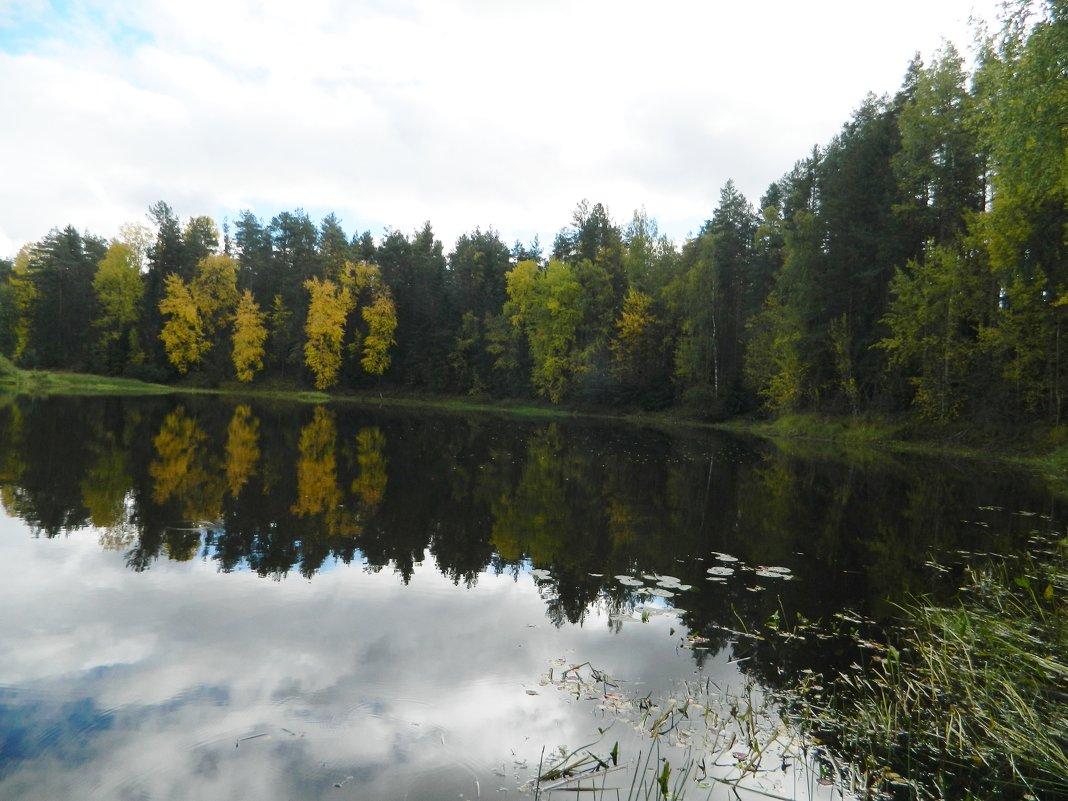 *Осень...* - Вячеслав