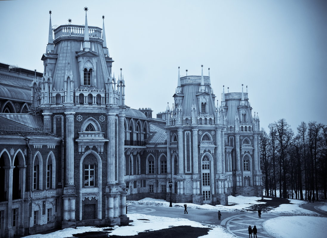 Царицынский дворец - Владимир Брагилевский