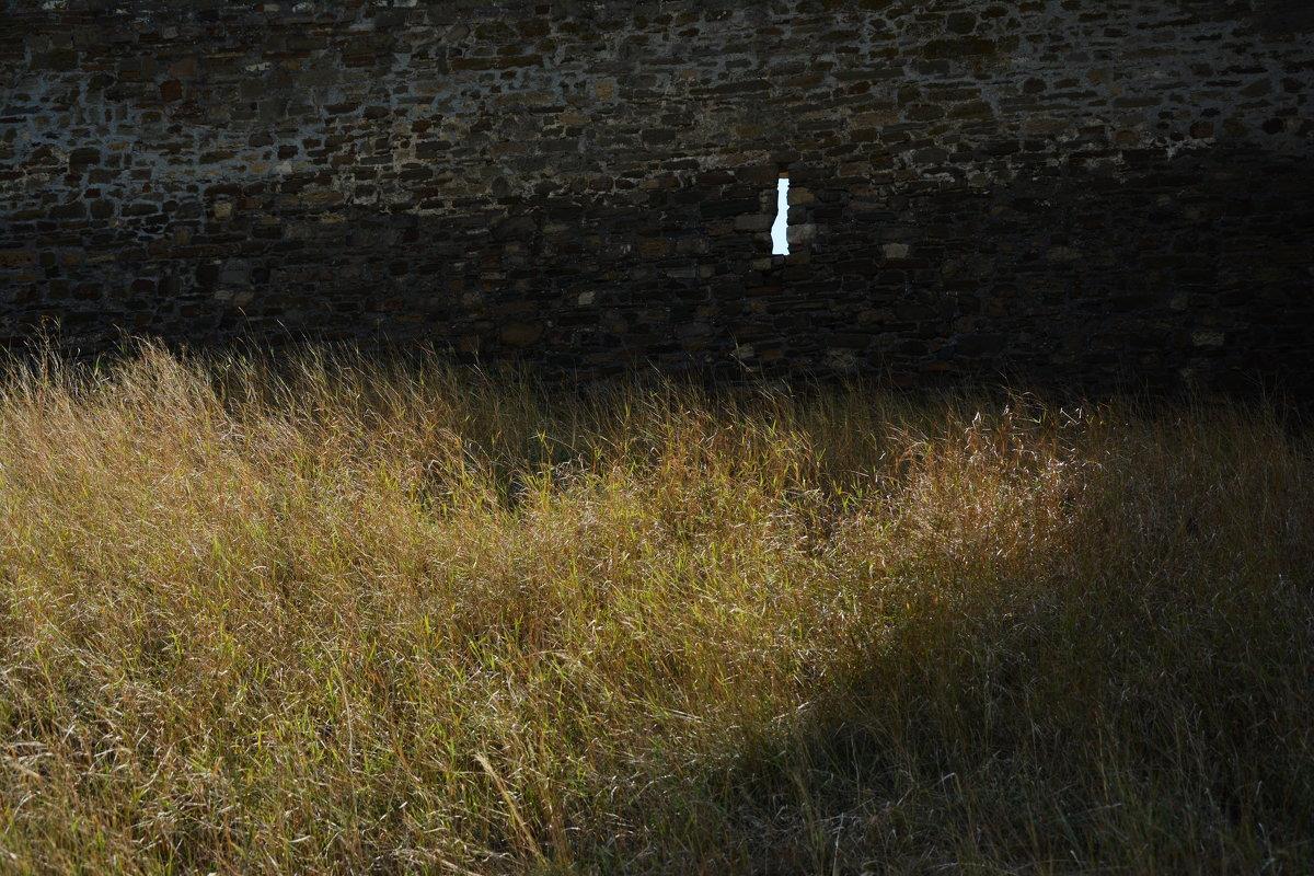Трава у крепостной стены - Наталья Покацкая